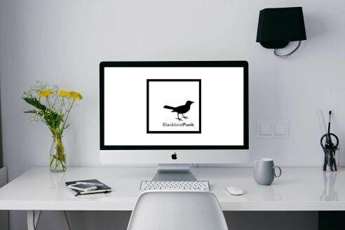 BlackBirdPunk Consulting